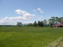 風の草原画像